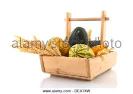 wooden harvest basket with ornamental gourds and dried grain