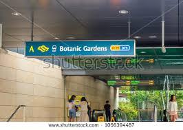Botanic Garden Mrt Singapore Mrt Stock Images Royalty Free Images Vectors