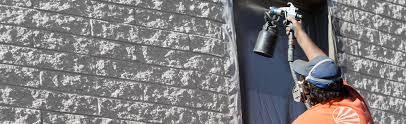 exterior house painting service spray net