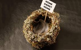 8 funny and inspiring quotes about empty nest syndrome