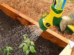 vegetable gardening video diy
