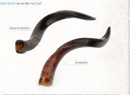 israel shofar yemenite shofars kudo barsheshet ribak shofarot israel shofar makers