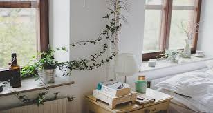Plants For The Bedroom by Good Bedroom Plants Nrtradiant Com