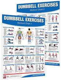 amazon in buy dumbbell workout poster chart set shoulder