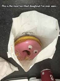 Funny Donut Meme - oh no they re going to eat me the meta picture