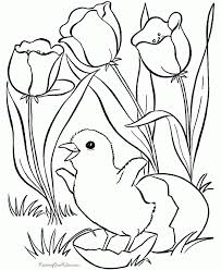 free lamborghini coloring pages print color