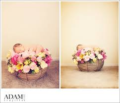newborn photo props newborn photography floral props layers of lovely