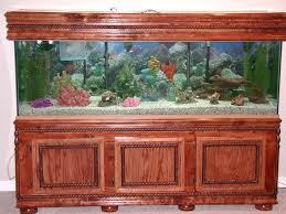 Home Aquarium Exclusive Aquarium Design