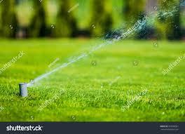 garden lawn sprinkler automatic garden watering stock photo
