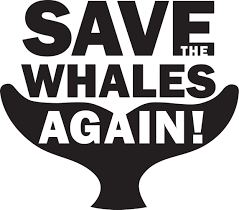 save the save the whales again globalgiving