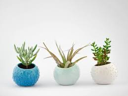 small planter set of 3 small handmade ceramic succulent planters air planters