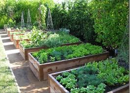 Raised Gardens Ideas Best 25 Raised Vegetable Gardens Ideas On Pinterest Veggie Diy