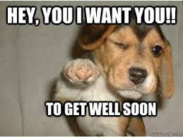 Funny Get Well Meme - 20 cutest memes for your sick friend sayingimages com