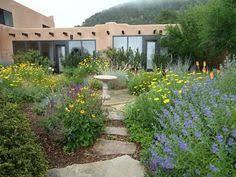 Southwest Landscape Design by Good Mix Of Cactus And Flowers Desert Retreat Mediterranean