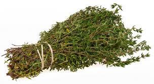 les herbes de cuisine 8 herbes aromatiques à avoir impérativement dans sa cuisine