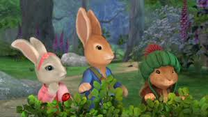rabbit dvds rabbit dvd talk review of the dvd