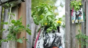 Upside Down Tomato Planter by Diy Upside Down Tomato Planters The Darling Bakers