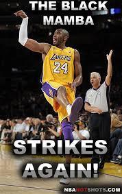 Kobe Memes - memes kobe bryant nba memes funny humor pictures flickr
