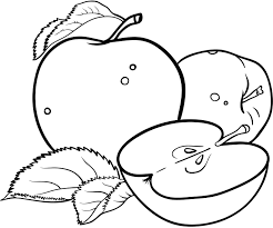 printable apple coloring pages for kids coloringstar