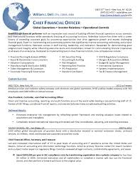 Financial Accountant Resume Example Vp Finance Resume Examples Resume For Your Job Application