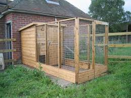 how to build a dog pen important tips and guidelines