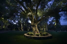 Led Landscape Tree Lights Landscape Tree Lighting Led Landscape Tree Lighting Winterminal Info