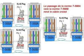 cat 5 wiring diagram to fax wiring diagrams on cat6 cable wiring