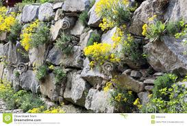 garden wall rock garden wall stock photo image of brick block wall 1518708