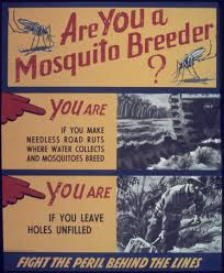 mosquito control without repellents u2013 prevent reproduction
