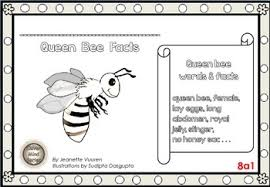 bee facts queen drone worker differentiated worksheets set 1