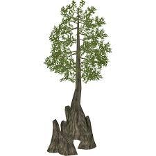 sw cypress zeta designs zt2 library wiki fandom