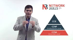 how to become network administrator by taking ccna ccnp and mcse