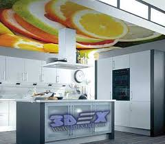 Kitchen False Ceiling Designs Top 3d Ceiling Designs And Murals On False Ceiling 2018