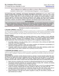 Sample Resumes For Sales Executives Sample Resume For Business Development Executive Resume Cv Cover
