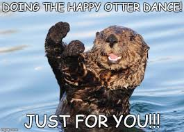 Celebration Meme - otter celebration imgflip