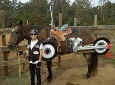 Halloween Costumes Horse Horsedvm Horse Halloween Costumes Horse Costumes