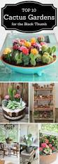live happy inspired look at all the pretty colors pinterest