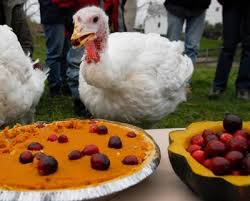 celebrate compassion leave turkeys your plate this
