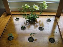 edentro indoor gardens armani creations