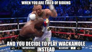 Boxing Memes - image tagged in mayweather conor mcgregor boxing jokes memes funny