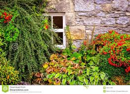 colorful garden plants with wall and window background stock photo