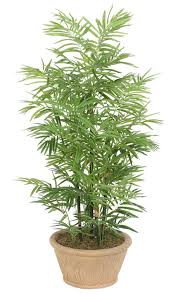 wholesale 8 mini bonsai tree for sale park decoration