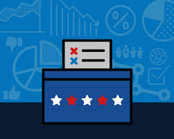 Michigan Flags National Election Studies Data Available
