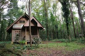 free images tree forest wood house building home hut