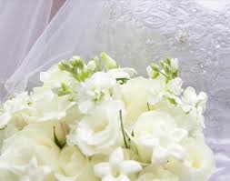 wedding backdrop book free wedding background clip use this background in your