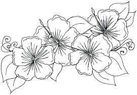 printable coloring pages of pretty flowers new 523 best butterfly coloring images on pinterest free coloring
