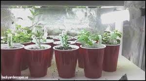 indoor herb garden kit led backyard escapes