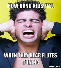 Flute Player Meme - 490 best band images on pinterest music flute problems and band