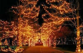 lights of christmas stanwood christmas christmas lights atarm beach stanwoodastanwood fia uimp