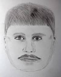 police distribute sketch of roseville robbery suspect news the